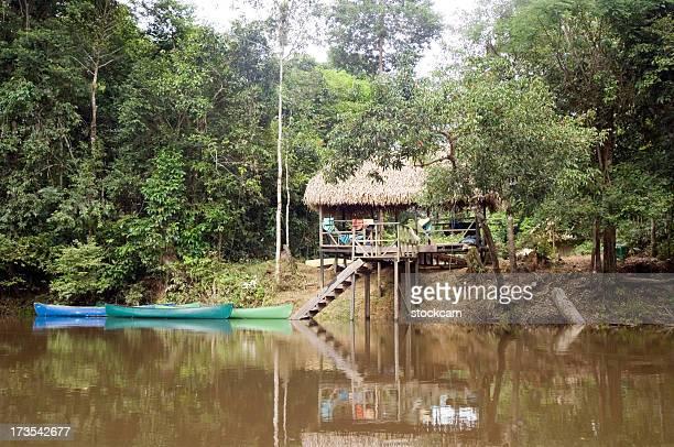 jungle lodge in ecuador regenwald - wohngebäude innenansicht stock-fotos und bilder