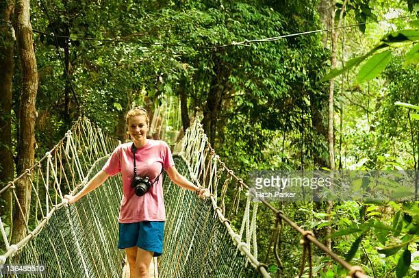 jungle voyager - taman negara national park stock photos and pictures
