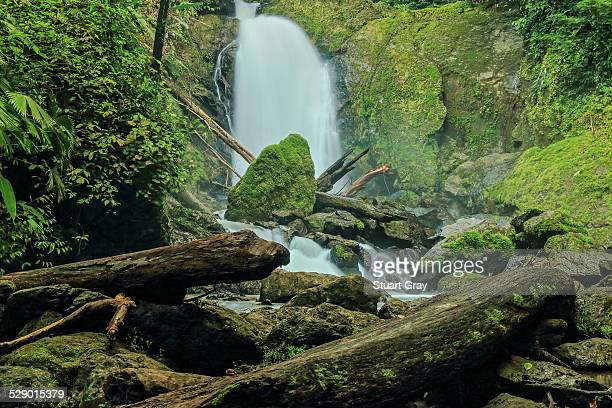 Jungle waterfall, Corcovado National Park