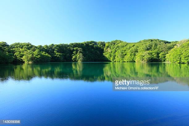 juniko lake, tamaike - aomori prefecture stock pictures, royalty-free photos & images