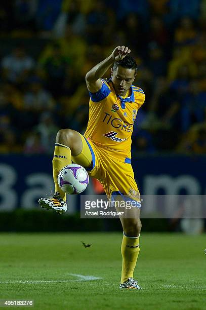 Juninho of Tigres receives the ball during the 15th round match between Tigres UANL and Santos Laguna as part of the Apertura 2015 Liga MX at...