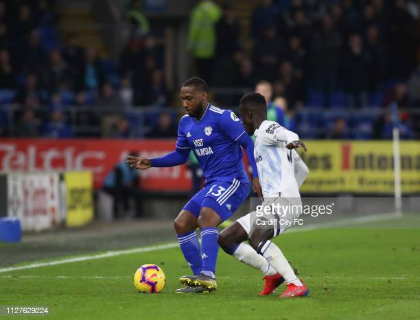 Junior Hoilett of Cardiff City FC and Ademola Lookman of Everton compete for the ball during the Premier League match between Cardiff City and...