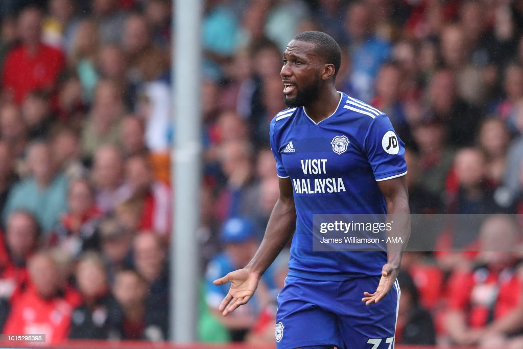 AFC Bournemouth v Cardiff City - Premier League