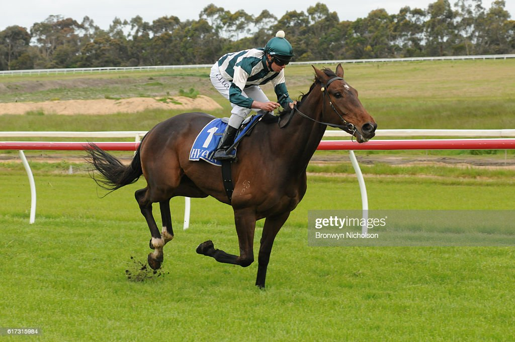 Junuh (NZ) ridden by Billy Egan wins Sinclair Wilson BM64 Handicap at Hamilton Racecourse on October 23, 2016 in Hamilton, Australia.