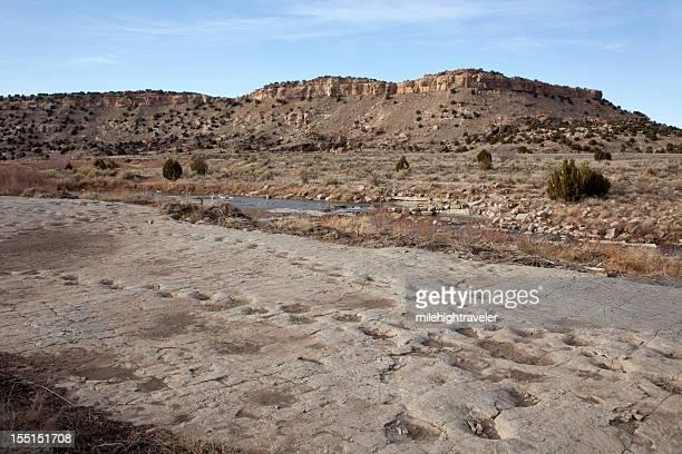 jurassic apatosaurus sauropod dinosaur tracksite purgatoire river colorado - sauropoda stock pictures, royalty-free photos & images
