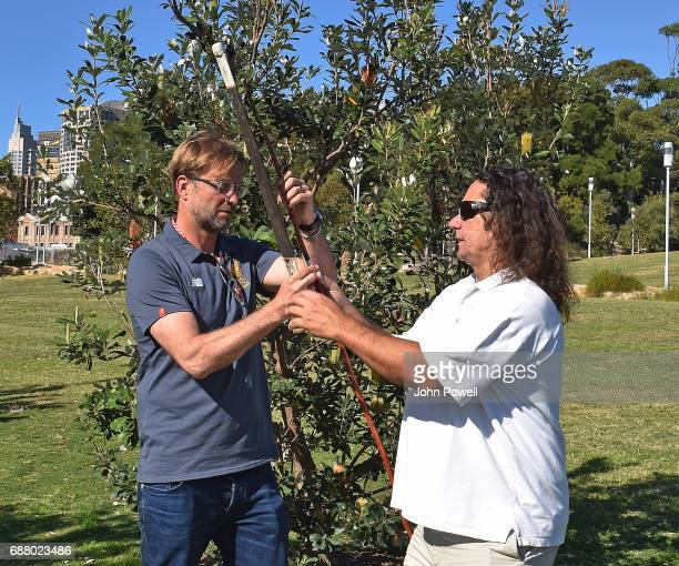 Jurgen Klopp manager of Liverpool is shown how to throw the Gulka by Clarence Slockee during a Aboriginal culture tour on Walumil Lawn on May 25 2017...