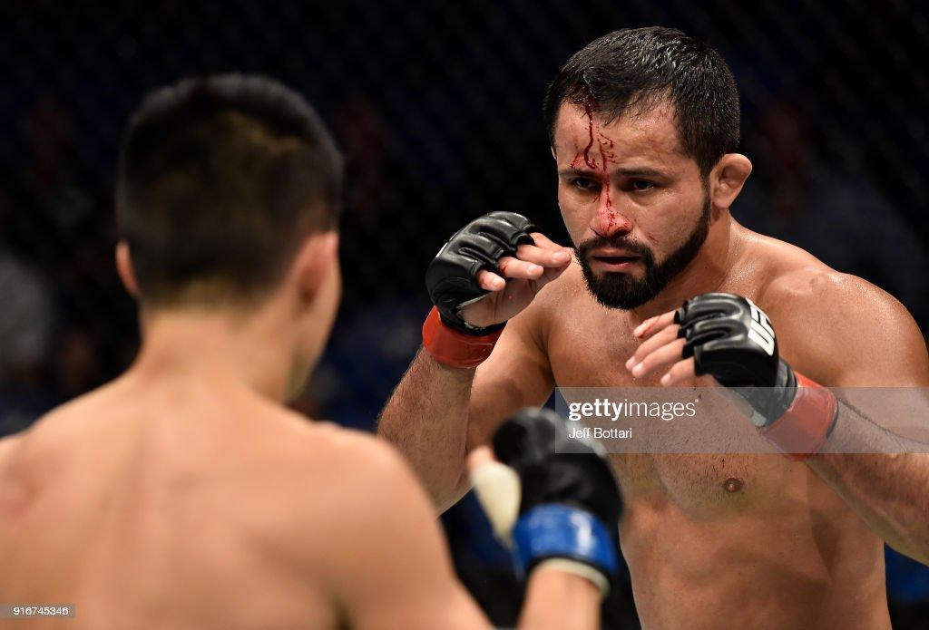 UFC 221: Formiga v Nguyen : News Photo