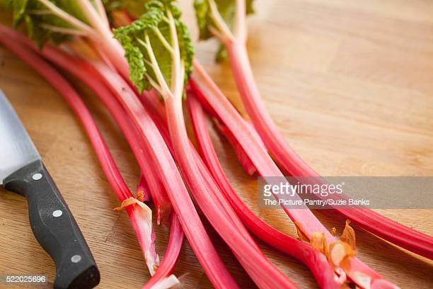 Just harvested Champagne rhubarb
