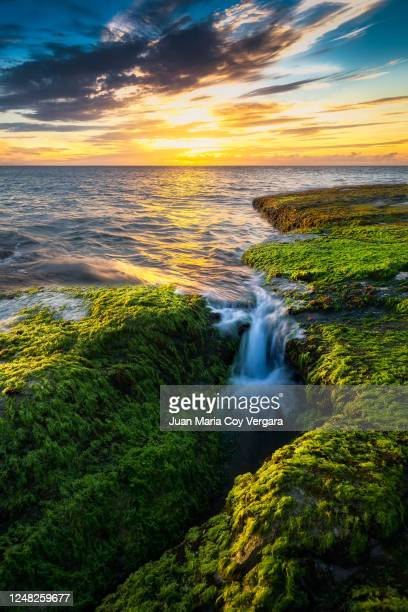 just like paradise, last rays of sunlight over mokule'ia beach - oahu's north shore (hawaii, usa) - water fall hawaii stock pictures, royalty-free photos & images