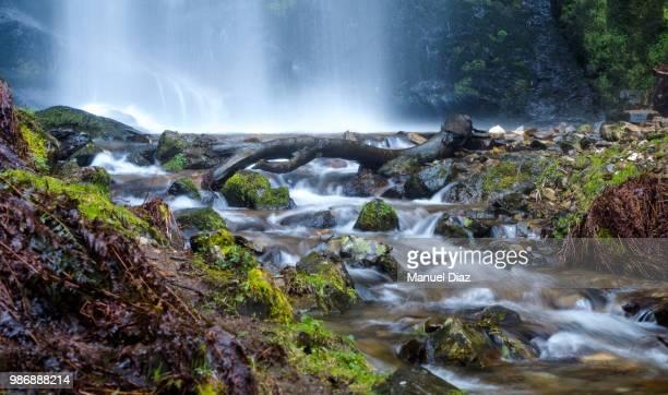 just passing by... - agua descendente fotografías e imágenes de stock