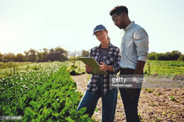 just take a look at these growth figures - mixed farming stock pictures, royalty-free photos & images