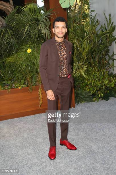 Justice Smith attends the premiere of Universal Pictures and Amblin Entertainment's Jurassic World Fallen Kingdom at Walt Disney Concert Hall on June...