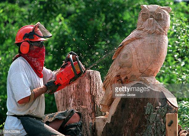 Justin Gordon of Groveland the owner and sole employee of Elwin Design works on a woodcarving of a great barn owl he is making out of an old tree...