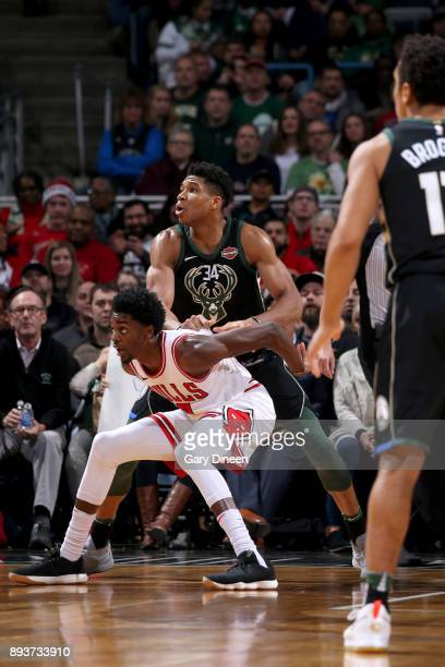 Justin Holiday of the Chicago Bulls boxes out against the Milwaukee Bucks on December 15 2017 at the BMO Harris Bradley Center in Milwaukee Wisconsin...