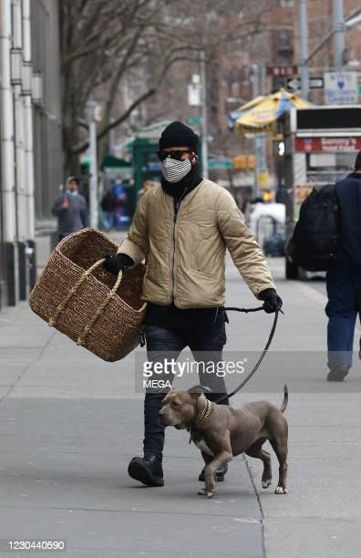 Justin Theroux walks his dog Kuma on January 5, 2021 in New York City.