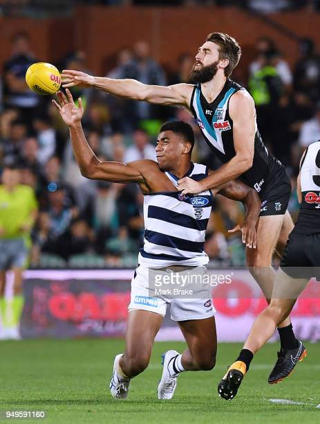Justin Westhoff of Port Adelaide rucks the ball over Esava Ratugolea of the Cats during the round five AFL match between the Port Adelaide Power and...