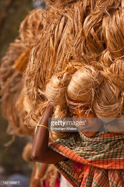 jute labourer - bangladeshi culture stock pictures, royalty-free photos & images