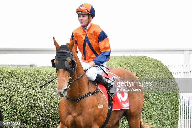 Jye McNeil returns to the mounting yard aboard Daskarzine after winning the Ladbrokes Odds Boost Handicap at Mornington Racecourse on April 16 2018...