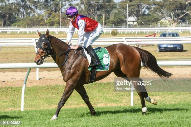 Jye McNeil returns to the mounting yard on Coutinho after winning the Werribee Car Wash Maiden Plate at Werribee Racecourse on April 19 2018 in...