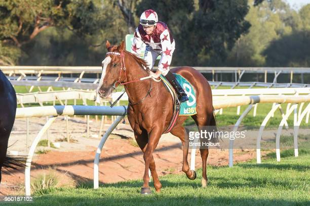 Jye McNeil returns to the mounting yard on Silentz after winning the Independent Cranes BM64 Handicap at Echuca Racecourse on April 23 2018 in Echuca...