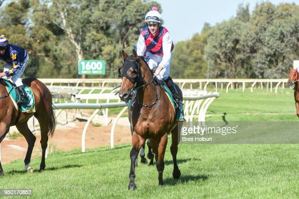 Jye McNeil returns to the mounting yard on Toorak Warrior after winning the Echuca CIH 3YO Maiden Plate at Echuca Racecourse on April 23 2018 in...