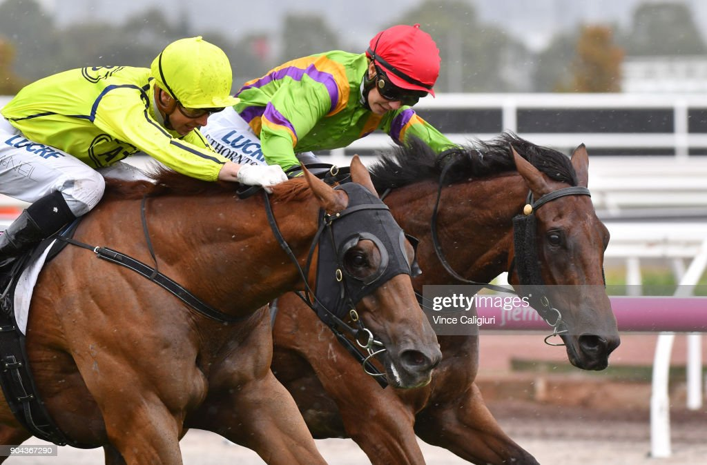 Jye McNeil riding Mr Money Bags defeats Stephanie Thornton riding Crystal Spirit in Race 5 at Flemington Racecourse on January 13, 2018 in Melbourne, Australia.