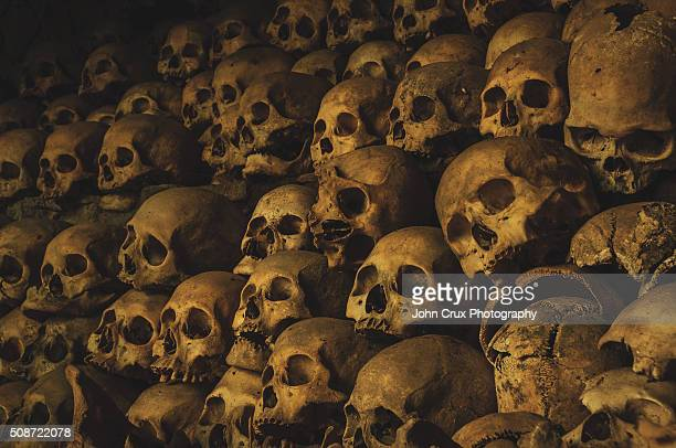 kabayan cave - mass grave stock pictures, royalty-free photos & images