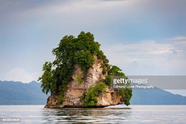 kabui bay,raja ampat, indonesia. - raja ampat islands stock photos and pictures