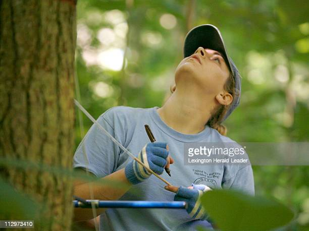 Kacie Tackett a graduate student from Eastern Kentucky University checks the height on a core sample of a hemlock tree in the Daniel Boone National...