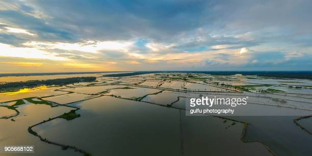 kadamakkudy water land aerial view kerala,india - extreme weather stock photos and pictures