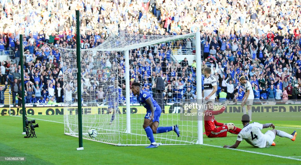 Cardiff City v Fulham FC - Premier League : ニュース写真