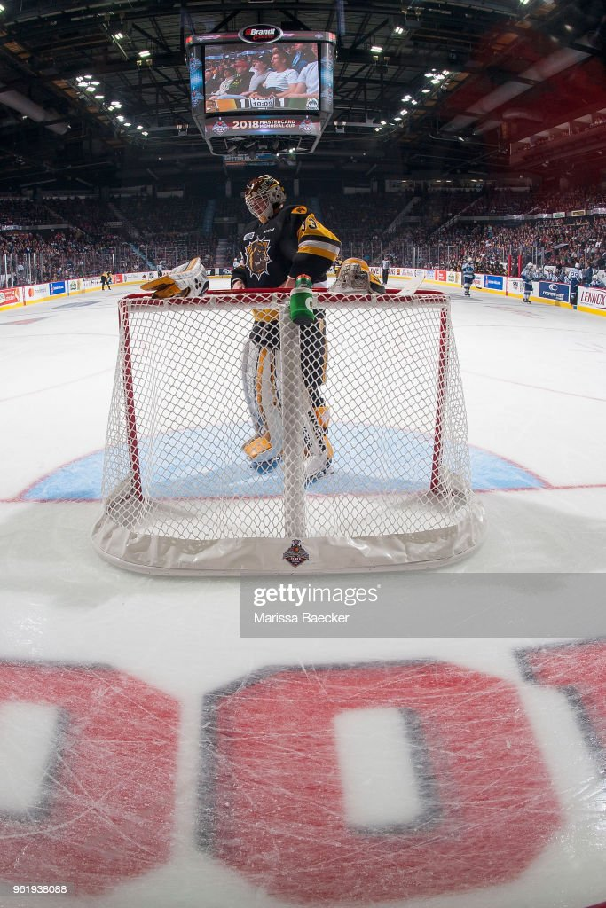 Kaden Fulcher #33 of Hamilton Bulldogs stands in net against the Swift Current Broncos at Brandt Centre - Evraz Place on May 21, 2018 in Regina, Canada.