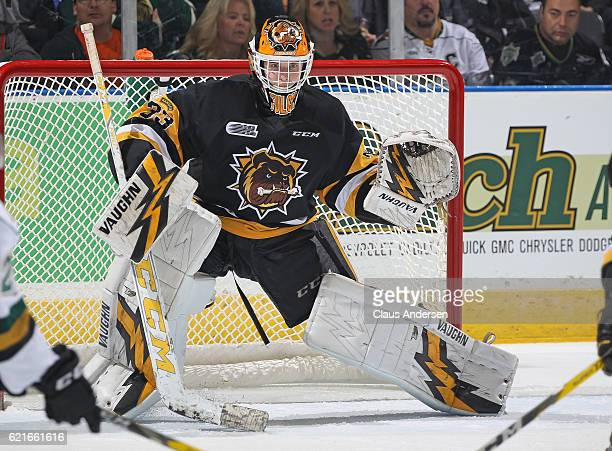 Kaden Fulcher of the Hamilton Bulldogs gets set to face a shot against the London Knights during an OHL game at Budweiser Gardens on November 6 2016...