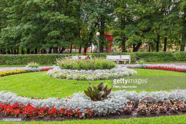 kadriorg park - canna lily stock pictures, royalty-free photos & images