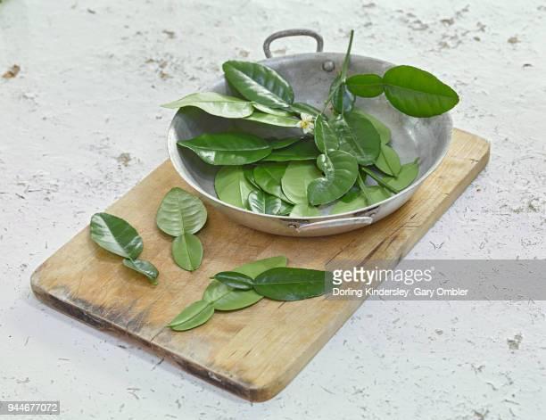 kaffir lime leaves on wooden board