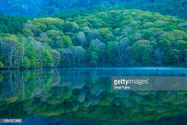kagami-ike (mirror pond) at morning, nagano, japan - 長野市 ストックフォトと画像