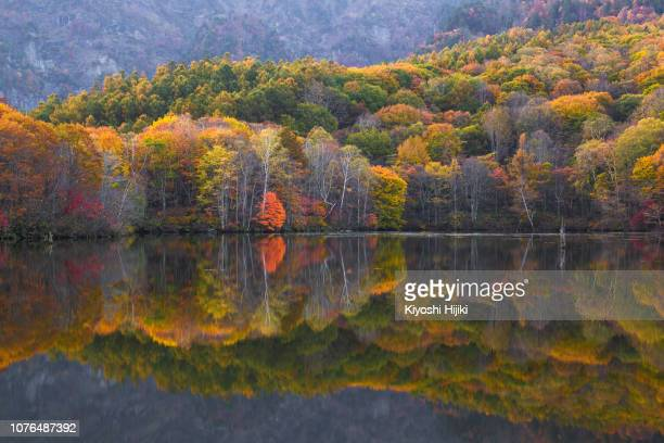 kagami-ike or mirror lake in nagano prefecture, japan. - 十月 ストックフォトと画像