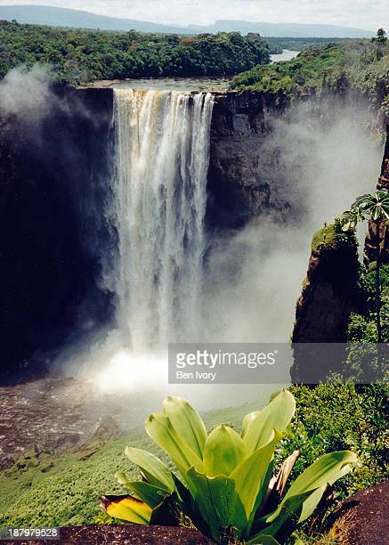 kaieteur falls guyana - guyana stock pictures, royalty-free photos & images