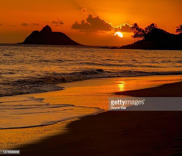 kailua beach at sunrise - kailua beach stock photos and pictures