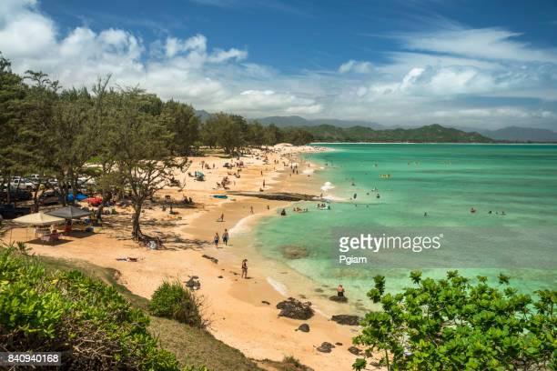 kailua beach park hawaii - kailua beach stock photos and pictures