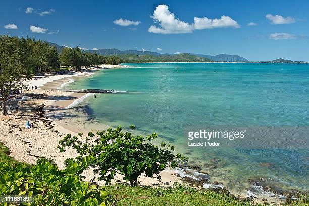 kailua beach park - oahu, hawaii, usa - kailua beach stock photos and pictures