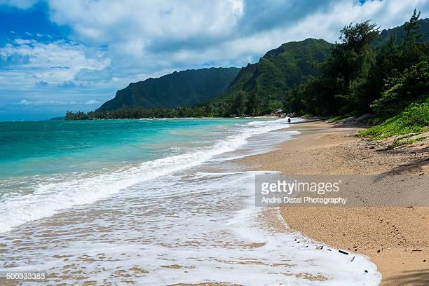 kailua beach park, oahu, hi - kailua stock pictures, royalty-free photos & images