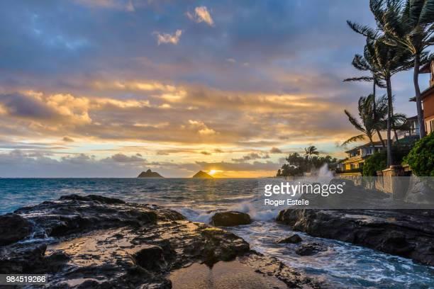 kailua beach park oahu - kailua beach stock photos and pictures