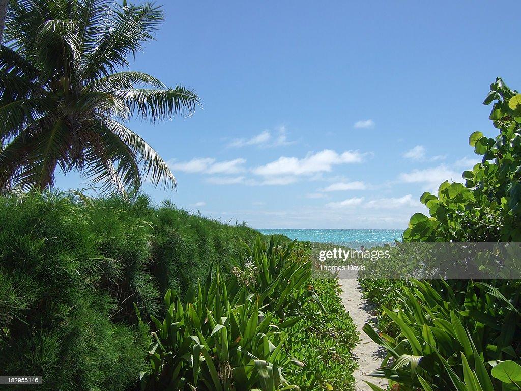 Kailua Beach : Stock Photo