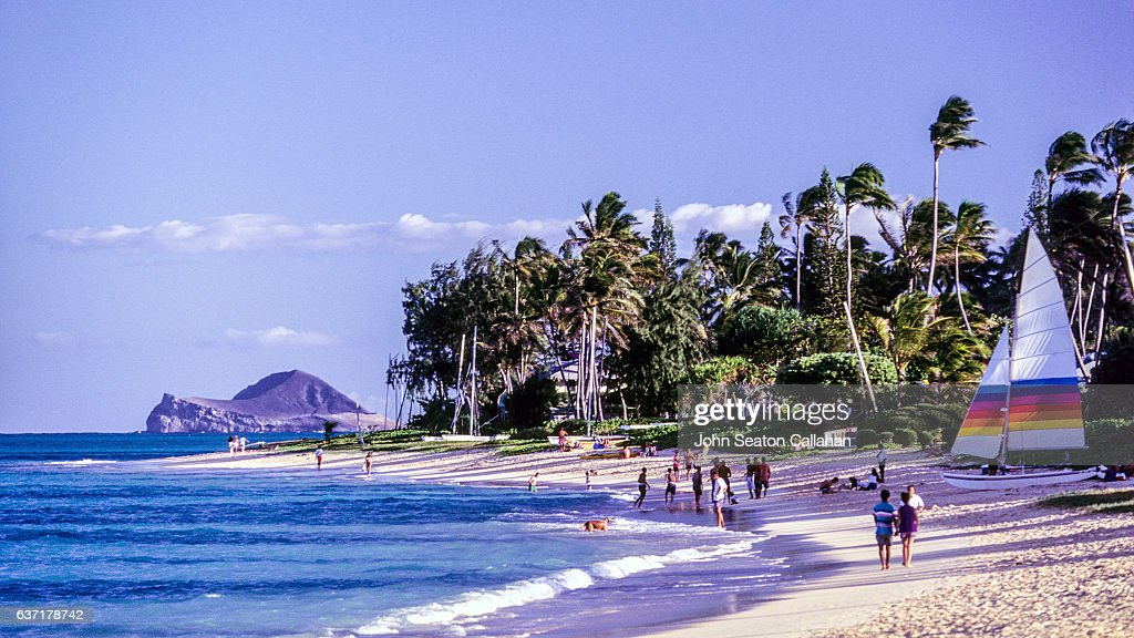Kailua Beach : Stock Photo