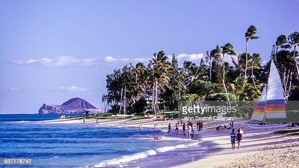 kailua beach - kailua beach stock photos and pictures