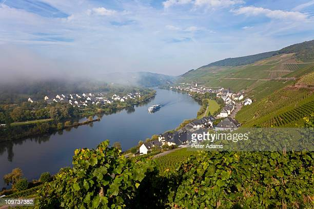 kaimt mosel village, rhineland-palatinate, germany - moselle stock-fotos und bilder