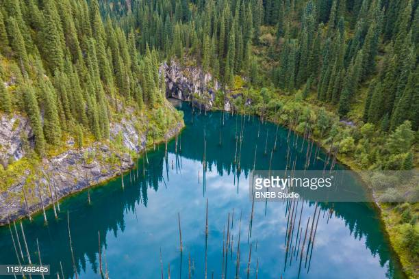 kaindy lake, kazakhstan - kazakhstan stock pictures, royalty-free photos & images