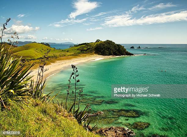 kaituna bay - northland new zealand stock pictures, royalty-free photos & images