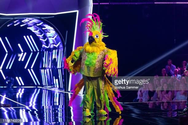 'Kakadu' 'The Masked Singer' on stage during the first liveshow of The Masked Singer at Coloneum on June 27 2019 in Cologne Germany